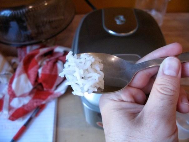 ricecookerrice