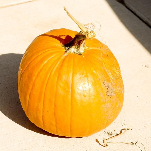 pumpkinpaint-1