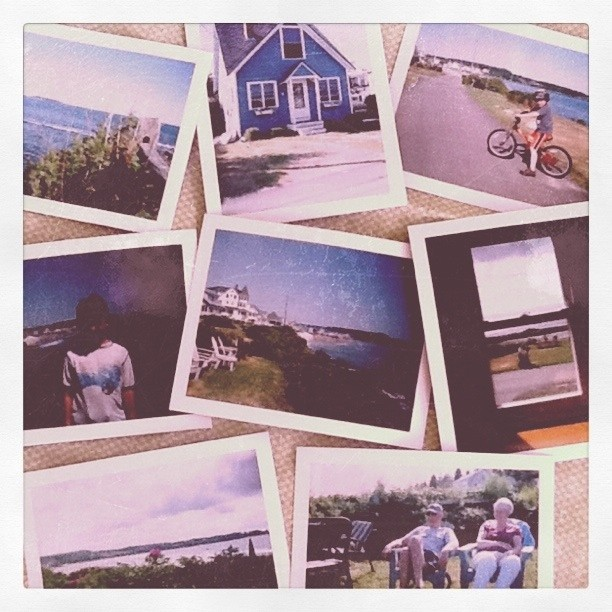 Polaroid 420 Land Camera (color)