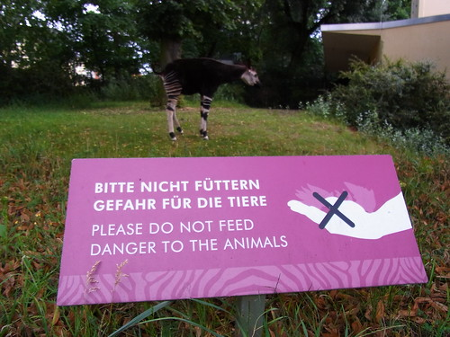 Please Do Not Feed Danger To The Animals