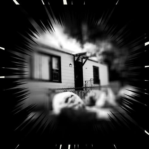 Camera Roll-794