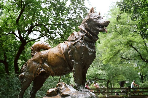 Balto in Bronze.