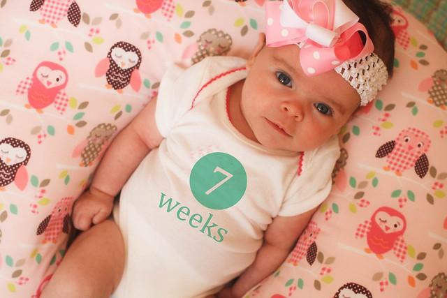 7 week onesie