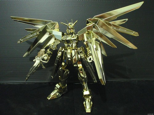 HG 2004 Freedom {Gold # Modelers Cup} (1)