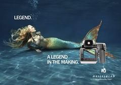 Hasselblad Legend Ad