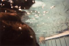 analoog onderwater