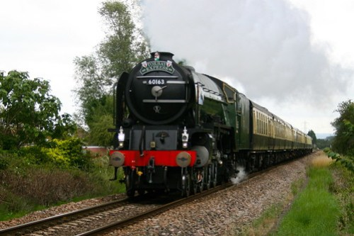 Torndao and the Torbay Express