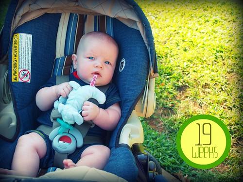 Noah - 19 weeks