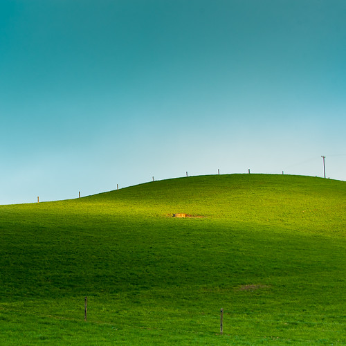 Farm Hill Grass por ►CubaGallery