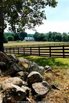 Springton Manor Farm