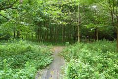 金沢自然公園(昆虫の森)(Kanazawa Nature Park)