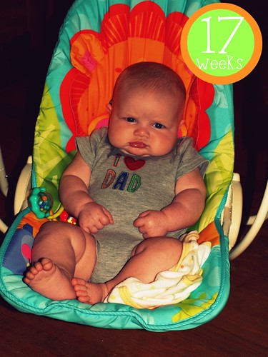 Noah - 17 weeks