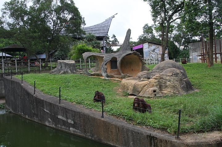 【另類動物園】六福村野生動物園~門票100元(下) - 佑佑皮皮 in udn 網誌 - udn部落格