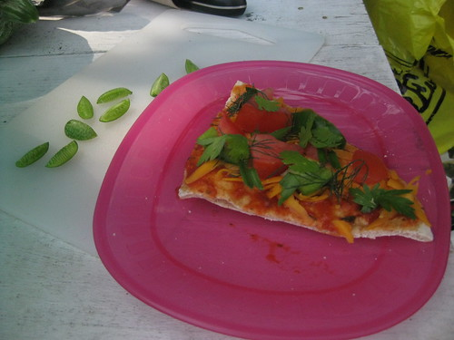 solar oven garden pizza with a slice of mouse melon