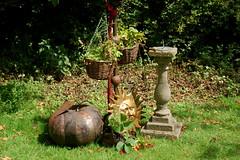 Holistic Gardens