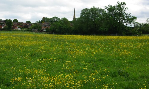 20110529-29_Flower Meadow - Braunston by gary.hadden