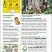TOPOLINO 2903 - Le foreste (3/3)