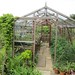 Greenhouse at Snowshill Manor