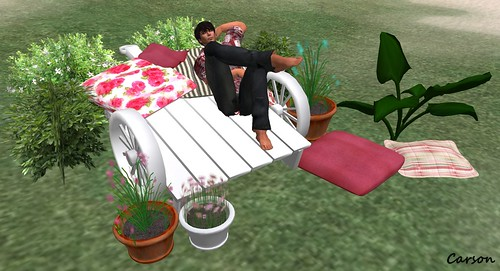Sher's Cottage Garden - Garden Cart with Benefits  ($10L)