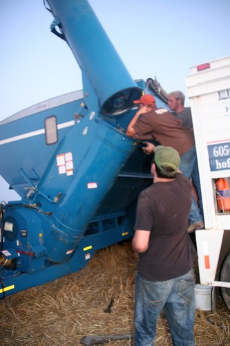 James, Leon and Roly try to fix the grain cart.