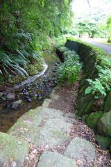 瀬上市民の森(瀬上沢小川アメニティ)(Segami Community Woods)