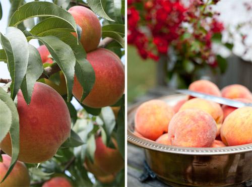 1_Peach_Cobbler