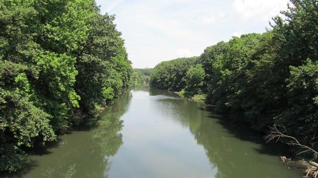 bronx river.