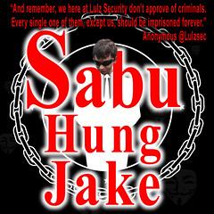 Lulzsec Hung Jake Davis