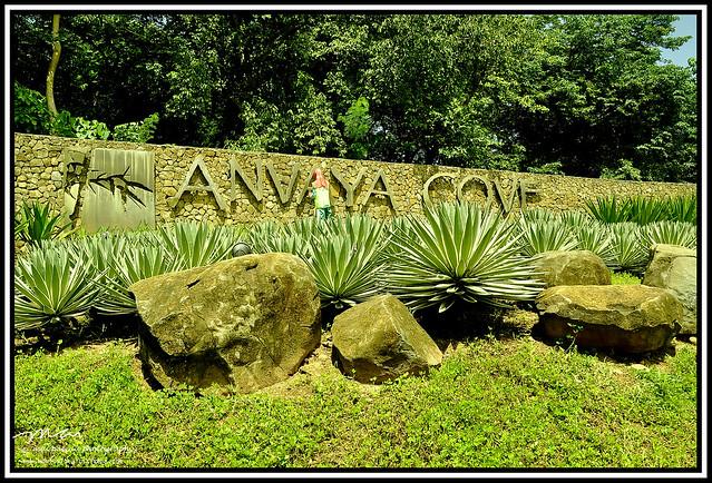 Premier Anvaya  011 copy