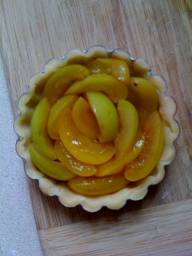 Plum tart test #1