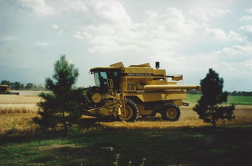 Home harvest in '01