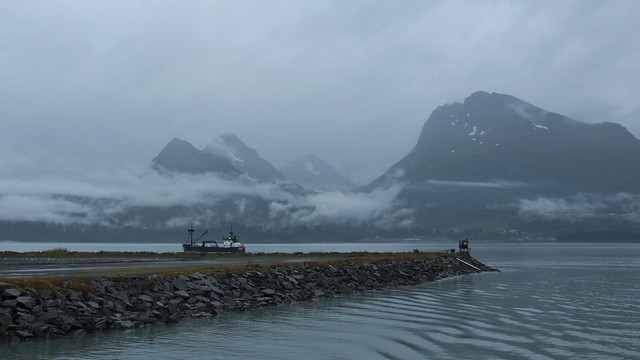 Back in Valdez Harbor