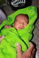 Sagan - Day Sixteen -  Loves ZJ's Towel
