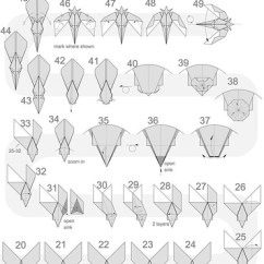 Origami Hummingbird Diagram Instructions Woody Dicot Stem Cross Section Simple Pinterest