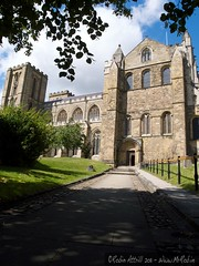 Ripon - Cathedral