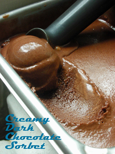 creamy dark chocolate sorbet