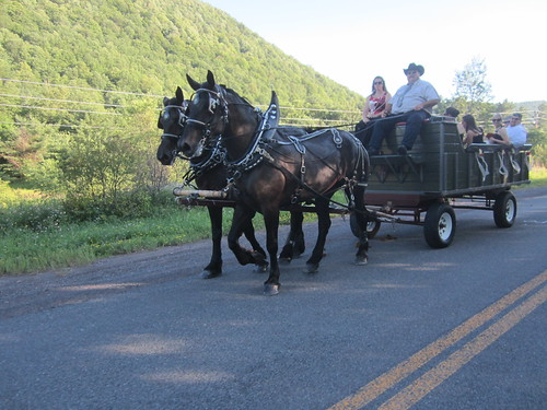 I missed the first horse carriage, that one had the bride & groom