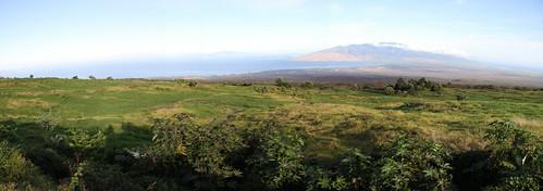 Maui Panoramic