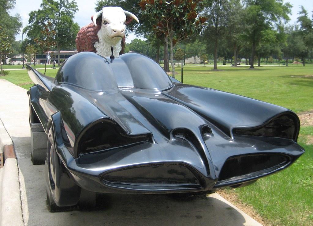 Buffalo driving the Batmobile
