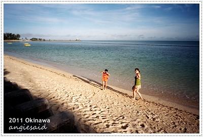natura154_20110701_001.jpg