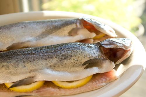 trout stuffed with lemons