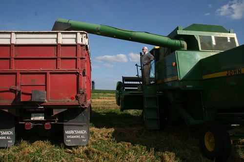 unloading grain
