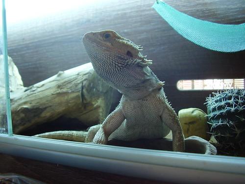 2011-08-04 Keiko 02
