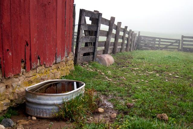 Watering Trough