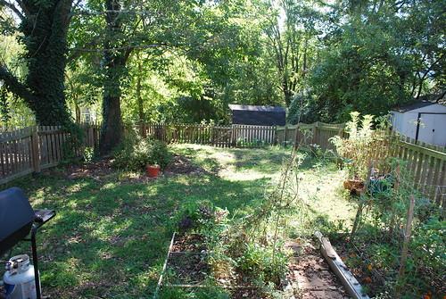 the garden before