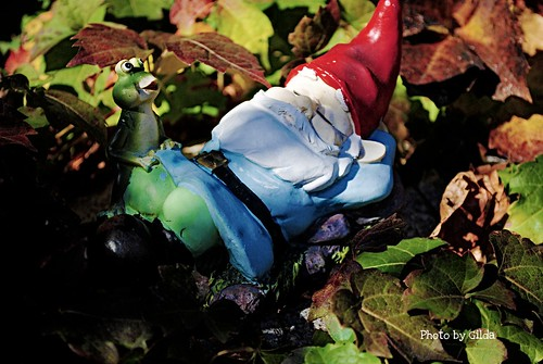 sleeping gnome