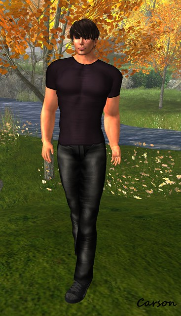 DragonLady's Closet - Terrence Plum Tee, Justin Leather Pants