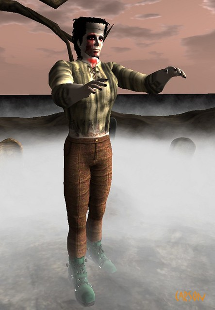 Eclectic Firefly- Frankenstiein Pants and Shirt, Jeaniesong's Things - Frankenstein's Head, Morte's Seduction - Zombie Skin, Wildz Creations - Frankenstein Boots (2)