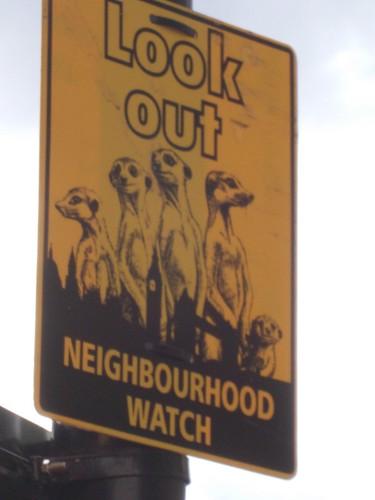 watchout