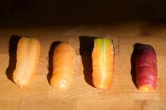 wortel uit pot 30-09